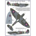 S.Spitfire MK IXC   / 2 decal versions : RYoC, RYoE,       Part I