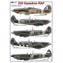 1/72  310 Squadron RAF