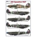 1/48  310 Squadron RAF