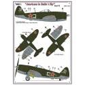 P-39N  & P-47D-27RE - Americans in Stalin's Sky, Part VI