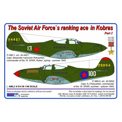 The Soviet Air Force ranking ace in Kobras