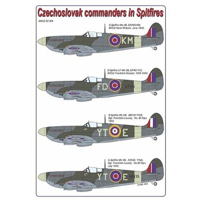 Czechoslovak commanders in the Spitfires
