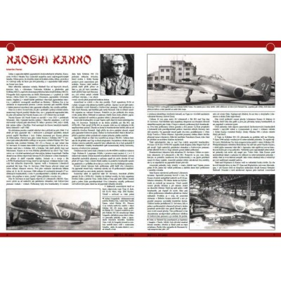REVI 91