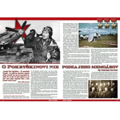 REVI 95