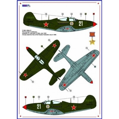 P-40C & P-39N - Americans in Stalin's Sky ,Part III