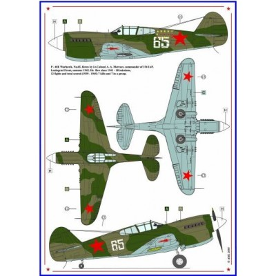 P - 40E & P-47D-27 - Americans in Stalin's Sky, Part IV