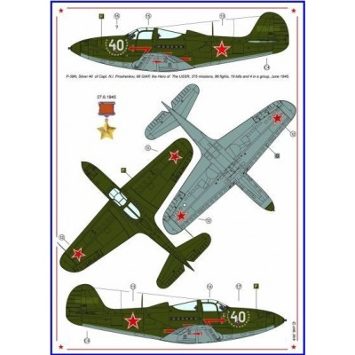P-40C & P-39N - Americans in Stalin's Sky, Part V