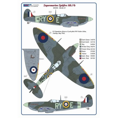 1/32 Czechoslovak pilots & dogs of No.310 and No.313 Squadron RAF